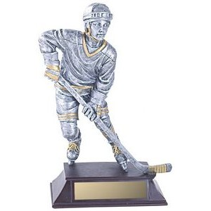 Male Hockey Player Trophy-Multi Color (6.25)