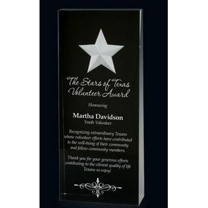 Black Star Wedge Acrylic Award (7)