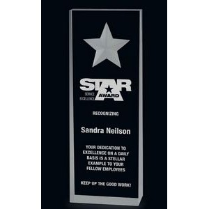 Clear Star Wedge Acrylic Award (7)